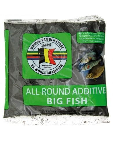 additivo pasture van den eynde big fish